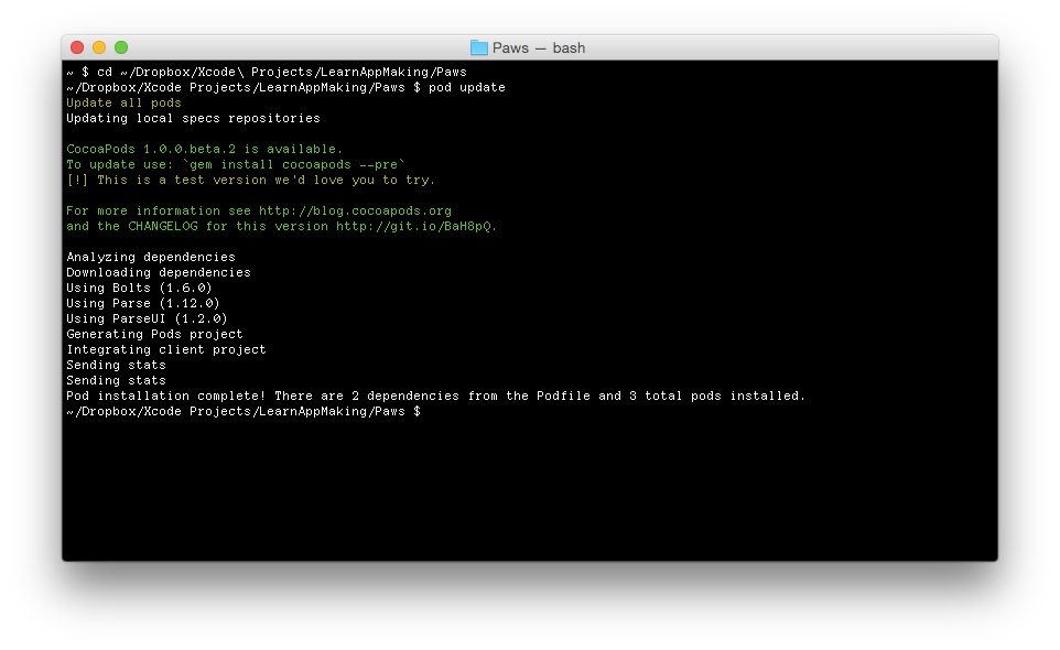 Terminal: pod update