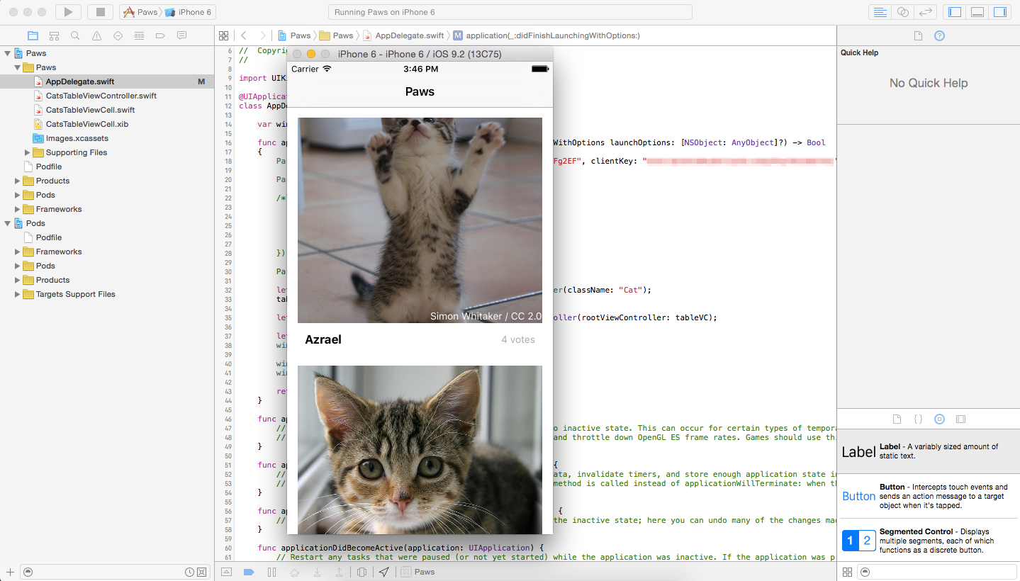 Xcode: Running The Paws App